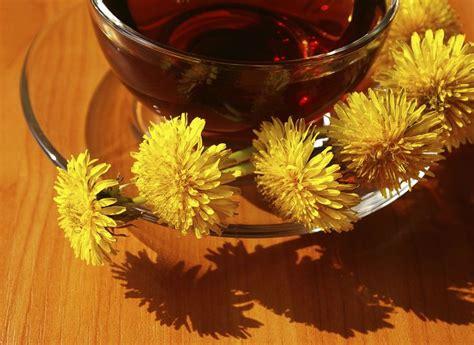 Dandelion Root Or Leaf For Detox by Best 25 Dandelion Tea Detox Ideas On