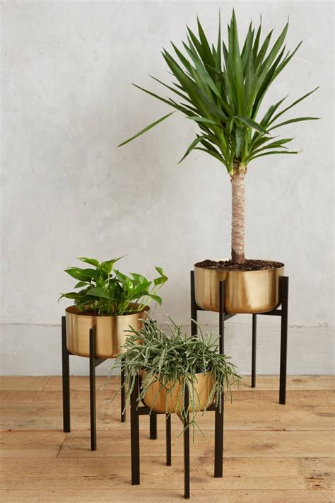 Stand Planter top 10 decorative plant stands for this summer
