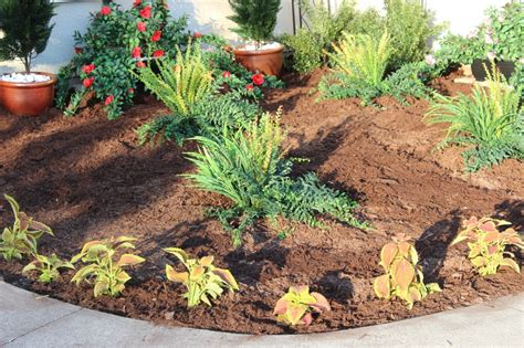 how to plant a flower bed how to plant a flower bed 28 images how to prepare and
