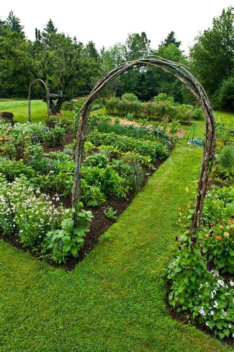 Kitchen Garden Arbor Associer Vos Plantes Pour Un Jardin Bio Roselia