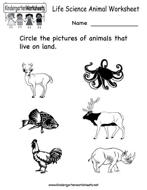 worksheets for preschoolers in science science printables for kids life science animal