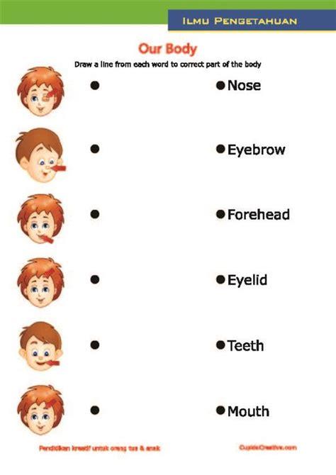 belajar bahasa inggris untuk anak tk sd belajar anak tubuh manusia bahasa inggris