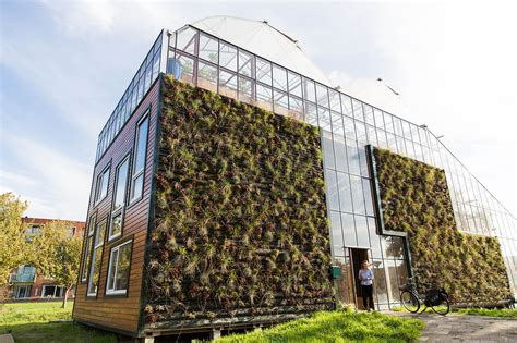 green design house giant greenhouse in rotterdam doubles as a light filled family home chibb house