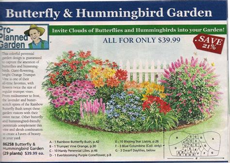 hummingbird garden layout 69 best images about attract butterflies hummingbirds on