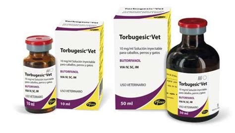 butorphanol for dogs torbugesic vet new indications of use and species of destination in dogs and cats