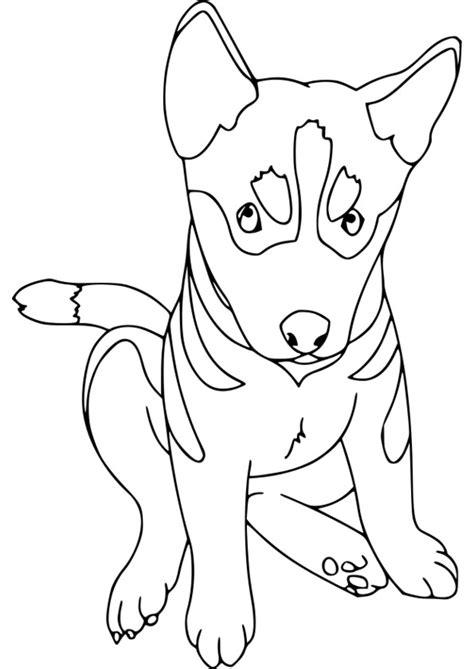 dessins de coloriage chien de traineau  imprimer