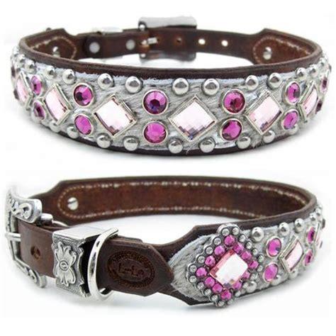 designer collar collars leather designer personalized collars invitations ideas