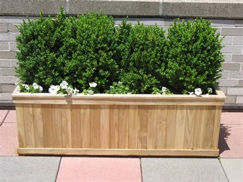 Hedge In Planter Boxes by 17 Best Images About Flower Boxes On Raised