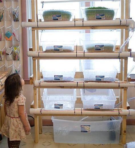 creative  innovative homemade hydroponics systems