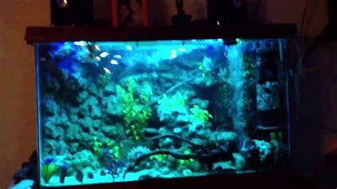D I Y Aquarium Lighting Led Strip Lights Youtube Aquarium Led Light Strips
