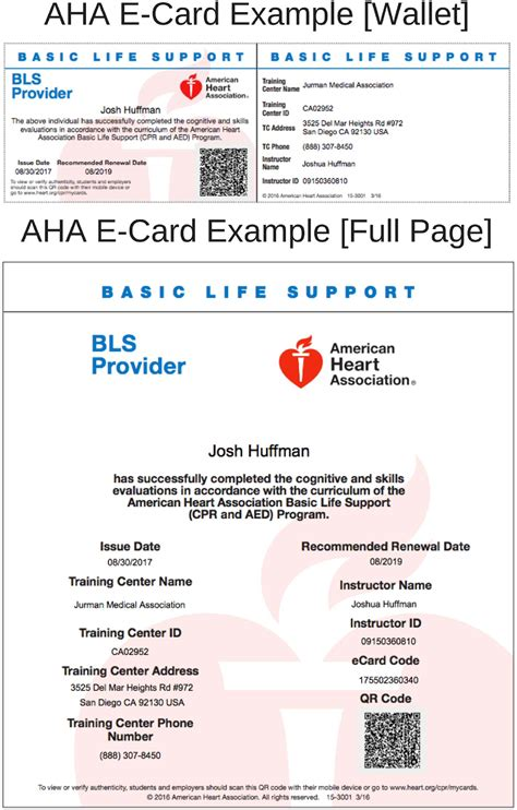 Aha Bls Card Template by American Association Cpr Aed Certification