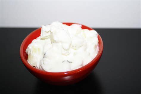 ricette di cucina libanese la cuciniera moderna cucina libanese cetrioli e yogurt