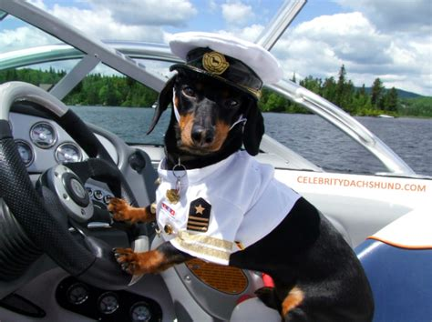 do i need a captain s license for my boat how to become a boat captain luxury yachts
