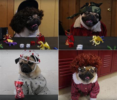 pug things of pug dressed as all the characters from things geekologie