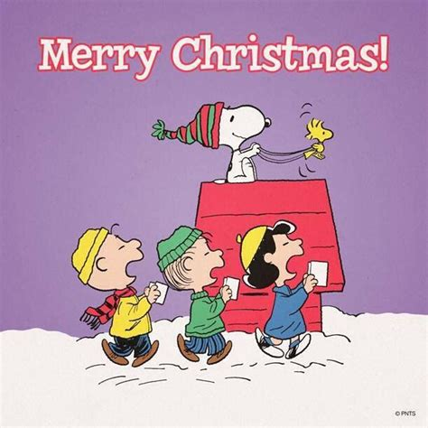 christmas charlie brown  friends pinterest
