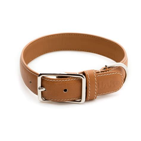 smart collar link akc smart collar x small link akc touch of modern