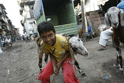 Build A Small House by The Famous Dharavi Slum Mumbai Safe And Healthy Travel