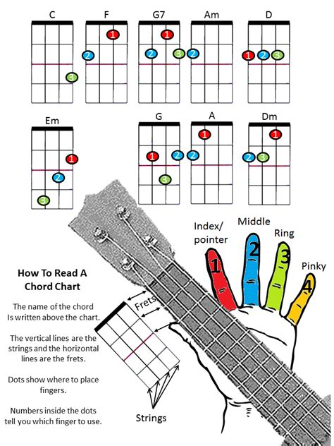 ukulele colors ukulele color chart available in color black and white