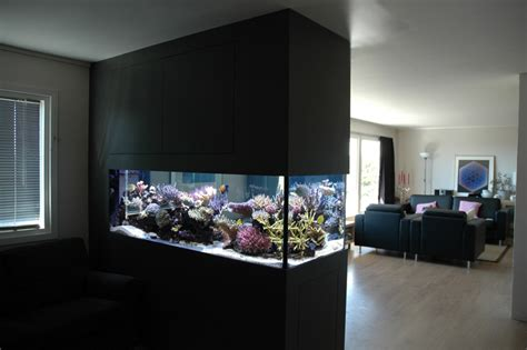 modern aquarium modern aquarium design for reef aquaria and freshwater