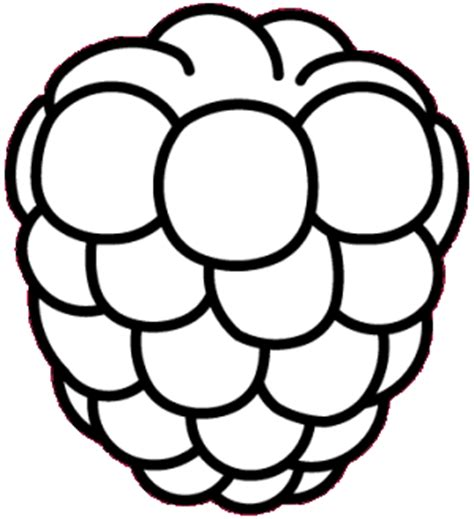 black raspberry coloring coloring pages