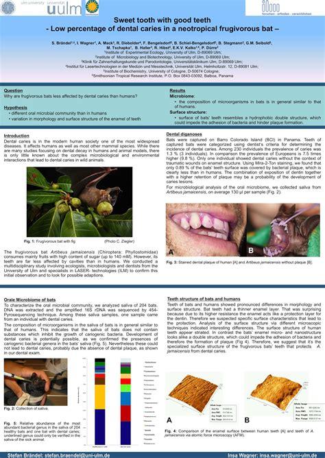 layout de poster cientifico como fazer um p 244 ster cient 237 fico sobrevivendo na ci 234 ncia