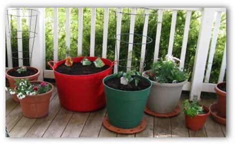 Patio Container Vegetable Garden Ideas Home Citizen Porch Vegetable Garden