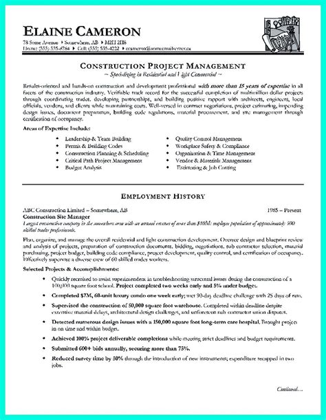 Professional Profile On Resume by Professional Profile On Resume 63 Images Sales