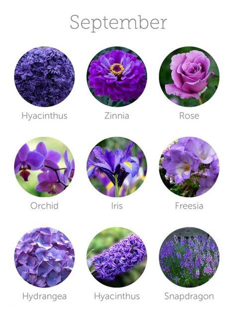 fiori a settembre i fiori di settembre e ottobre fioraio nettuno roma