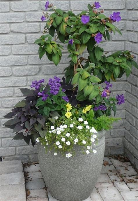 Front Entrance Planters by Summer Planter For Front Door Entry Giardino