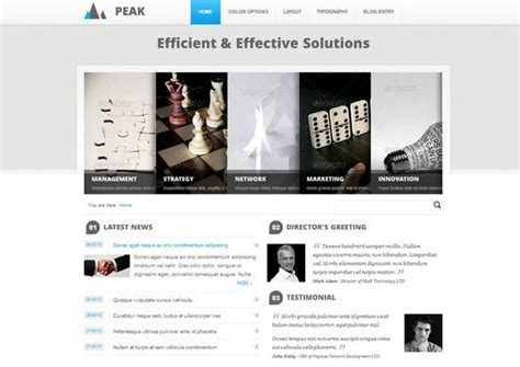 drupal themes for business 20 professional drupal templates for your next project ginva