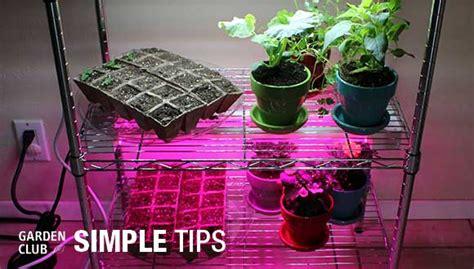 indoor garden lights home depot create a diy indoor grow light system garden
