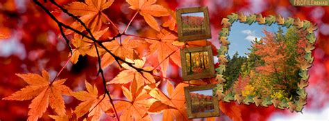 fall facebook covers  timeline pretty autumn