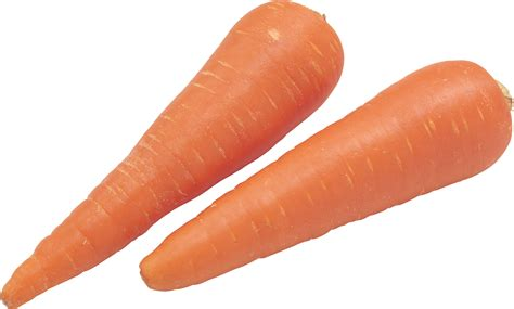 clipart png carrot png clipart best