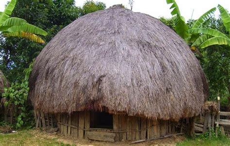 rumah adat papua nama keunikan  penjelasannya