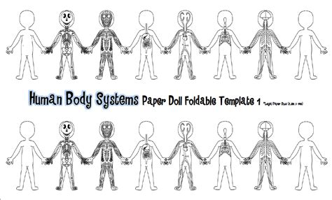 Section 35 1 Human Systems by Tangled With Teaching Hooray For The Humans Part Ii