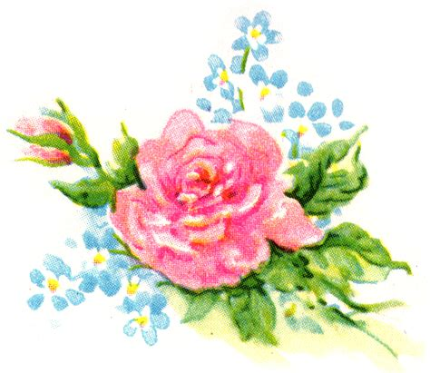 clipart flower pink clipart vintage floral pencil and in color