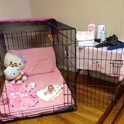 abdl lock lilblubunny sissy babies get locked up in the sissy cage