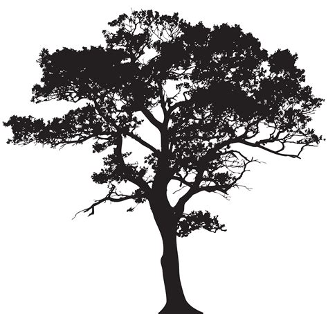 tree tattoo png silhouette tree png clip art image gallery yopriceville