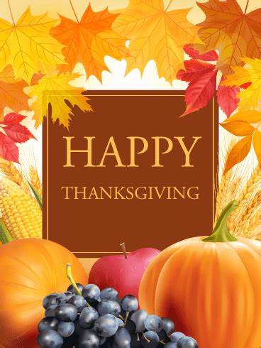 lets celebrate thanksgiving card birthday greeting cards  davia