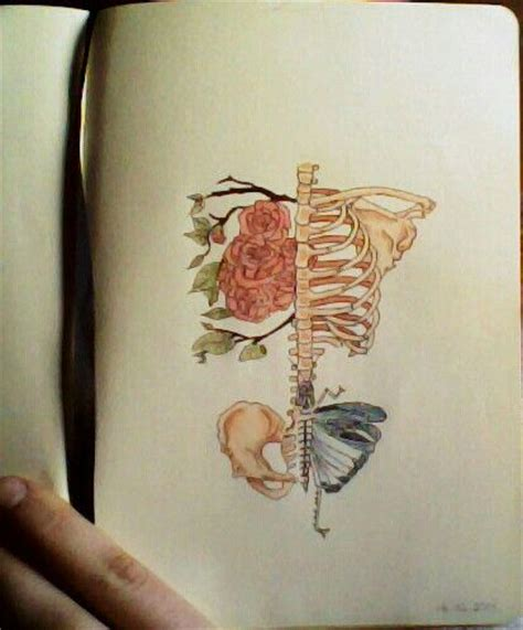 rose tattoo on rib cage skeleton rib cage flowers copic