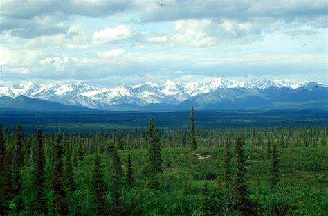 The Interior Plains Vegetation Webklik Nl Landklimaat