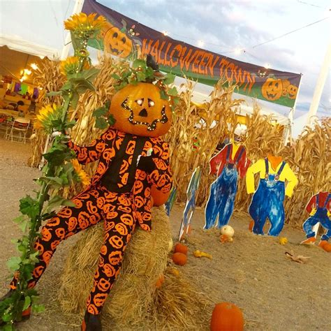 friendly pumpkin patch near me town pumpkin patch coupons near me in las vegas