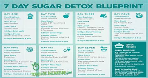7 Day Sugar Free Detox by Diet Weight Loss Touch Of The Nature