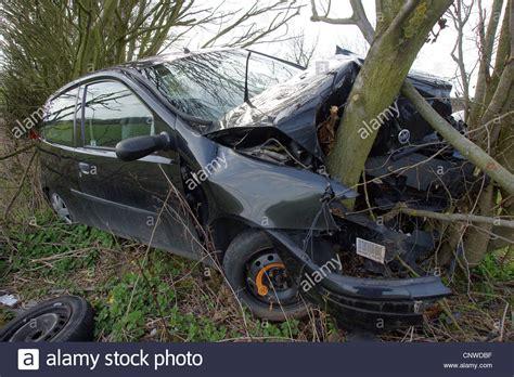 car crashes into tree car crash into a tree stock photo royalty free image