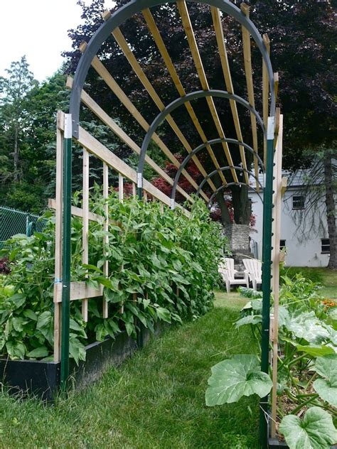 build a garden trellis grow 100 more food in half the space theprepperproject com