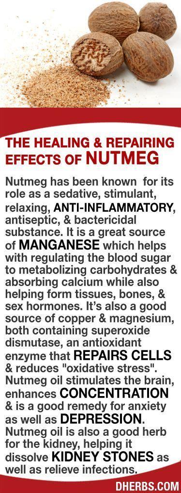 Dherbs Detox Symptoms by Dherbs Ht Nutmeg Jpg 374 215 1 017 Pixels Health Tips