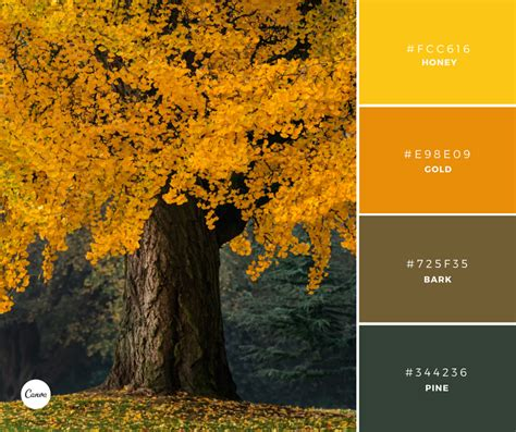 harvest colors canva on quot color combinations harvest gold try
