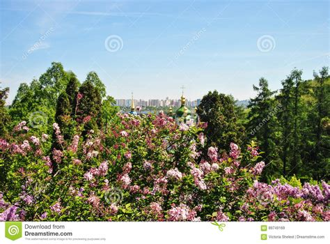 Is The Botanical Garden Free View Of Kiev From The Botanical Garden Royalty Free Stock Photography Cartoondealer