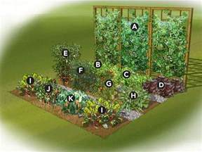 home design ideasjust how to format an outdoor plant backyard