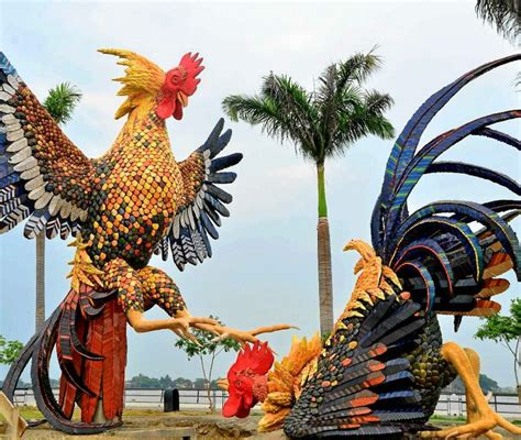pelea de gallos en cupey san juan pr foto ang233lica allen peleas de 17 best images about el gallo giro on pinterest granada